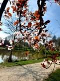 lac du Coucut