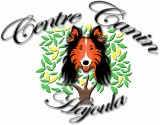 centre canin