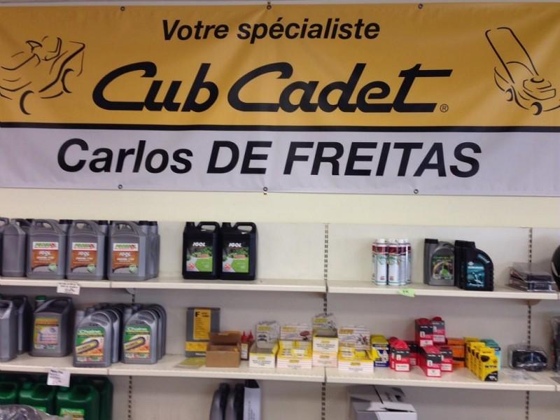 CARLOS DE FREITAS