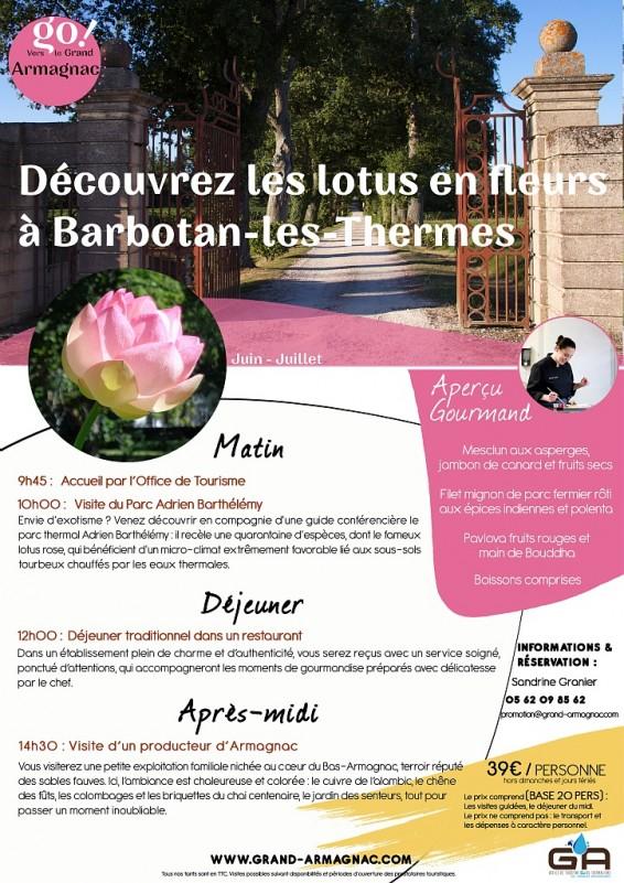 Découvrez les lotus en fleur à Barbotan